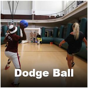 Web-_Dodgeball1